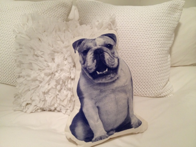 Printed_Animal_Pillow